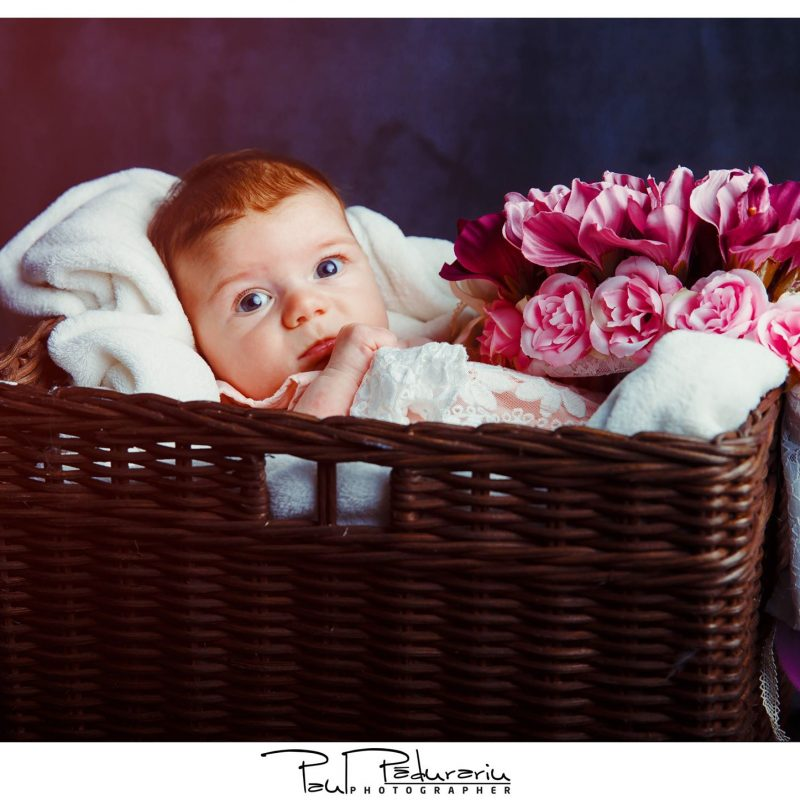 Sedinta foto nou nascut studio foto iasi paul padurariu fotograf iasi decor flori